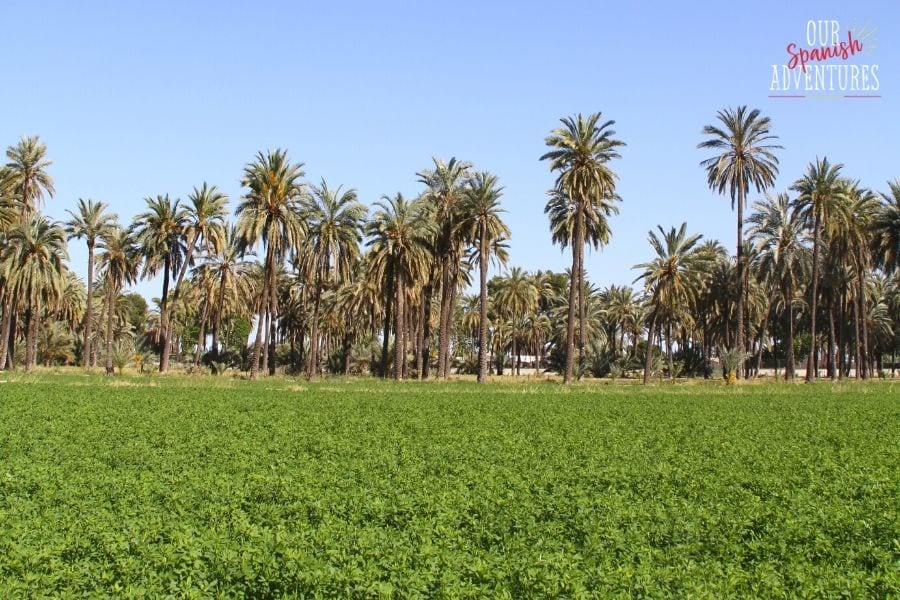 9 common misconceptions about Spain - green fields